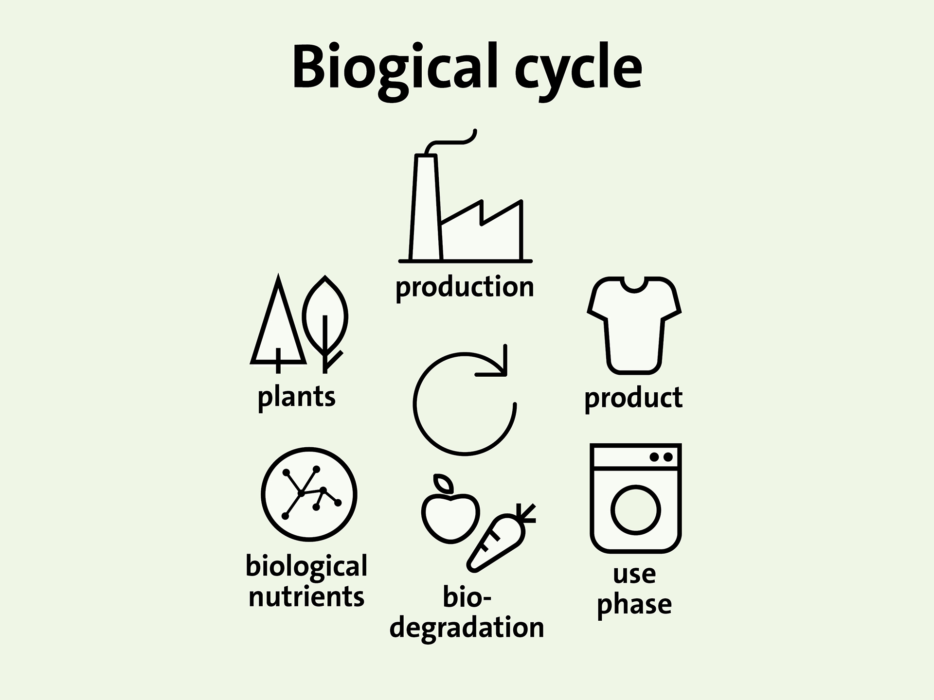 biogical-cycle.jpg